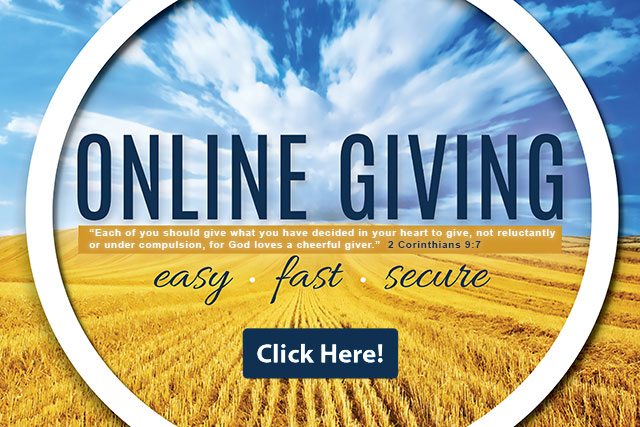 ifn-online-donation